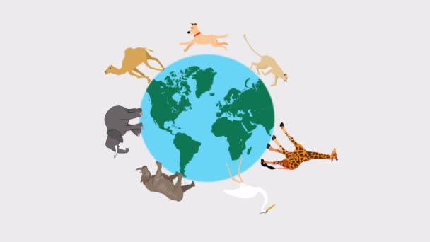 Animals around the globe eclogical concept 2d animation