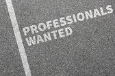 Profesionálové chtěl pracovních míst, zaměstnání pracují profesionální nábor