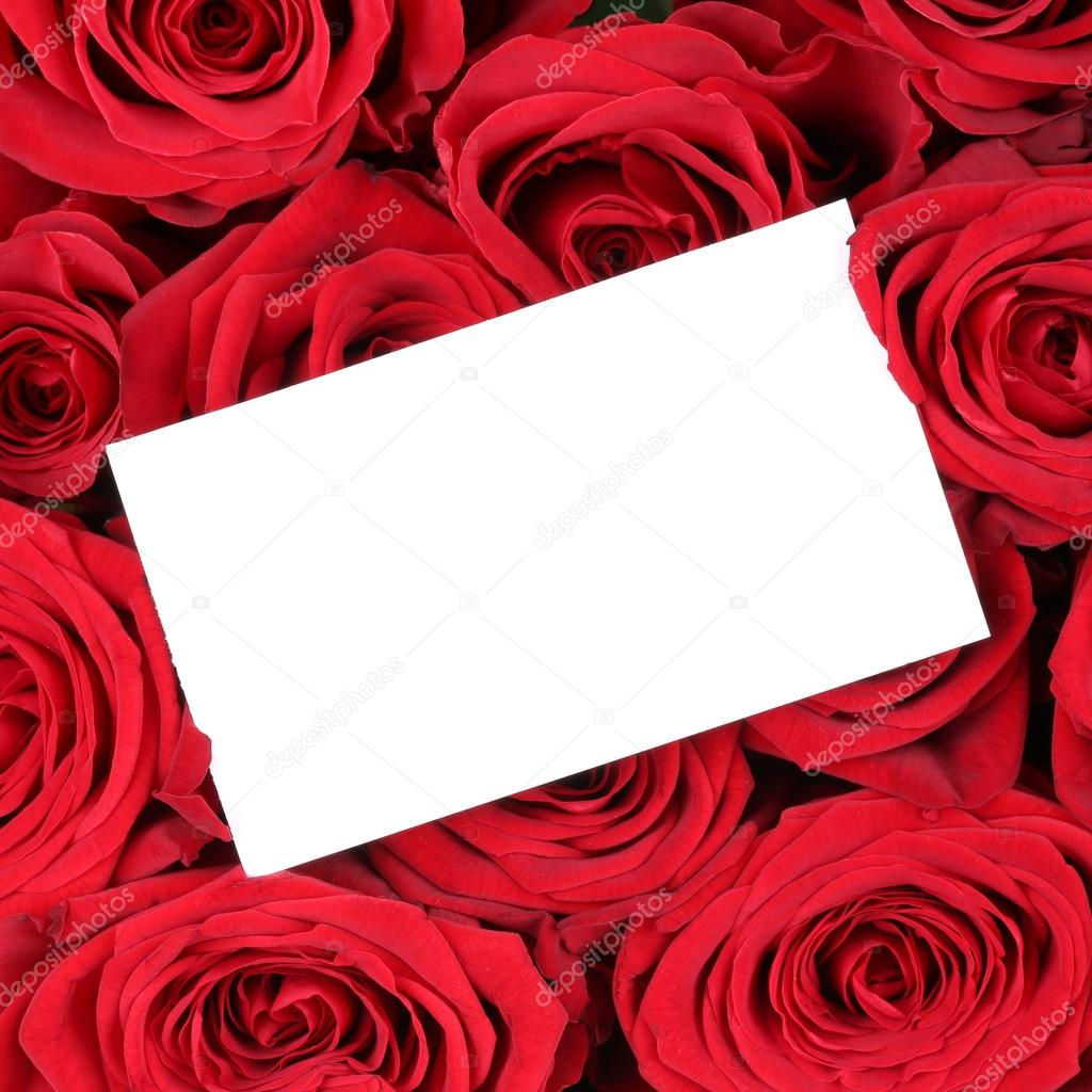 Empty greeting card with copyspace on red roses on birthday vale empty greeting card with copyspace on red roses on birthday vale stock photo bookmarktalkfo Choice Image