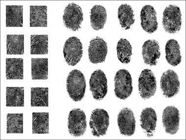 30 Detailed Fingerprints