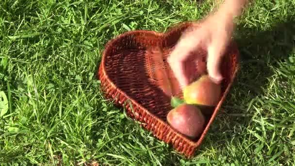 Ruky výplně proutěné srdce tvar miska s plody zralé hrušky. Milující zdravých biopotravin koncept.