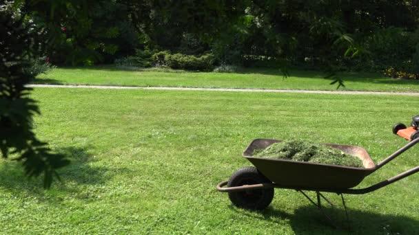 garden landscaper mowing lawn grass in his garden yard with mower. 4K