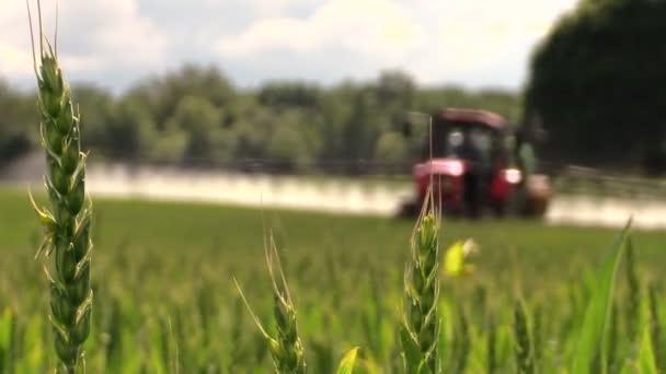 pšenice rostlin a traktor sprej zúrodnit pole s chemikáliemi