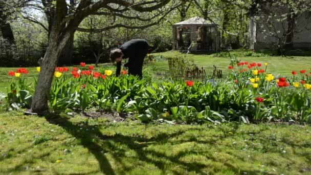 Könyök Kertész nő virágdíszbe virágágyás tavasszal