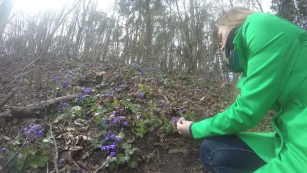 Girl in green coat pick violet flower blooms in spring. 4K