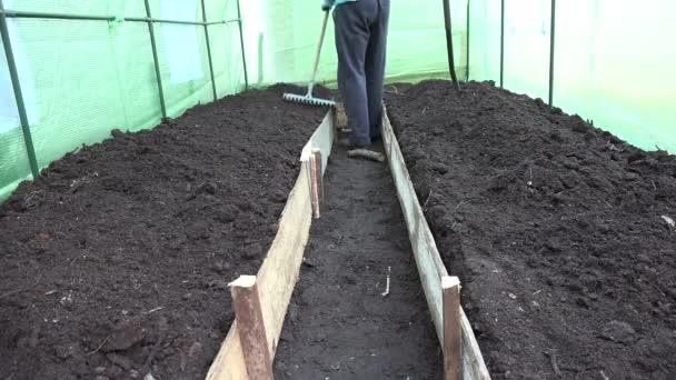 Ganz und zu Extrem Landwirt Mann Abgleich Boden Bett mit Raker Tool im Gewächshaus @VZ_75
