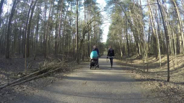 Happy family couple walk with baby carriage in spring forest. 4K