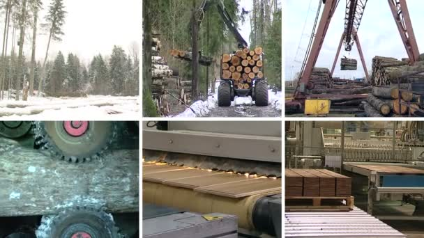 Timber and lumber industry. Parquet board production. Collage.