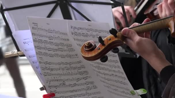 Closeup of musician hands play viola from music sheet note paper. 4K