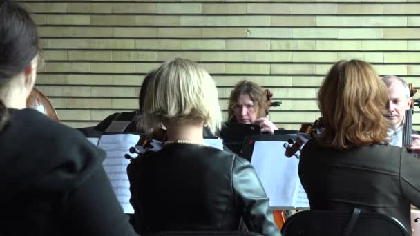 string musician orchestra with soloist play and sign. 4K