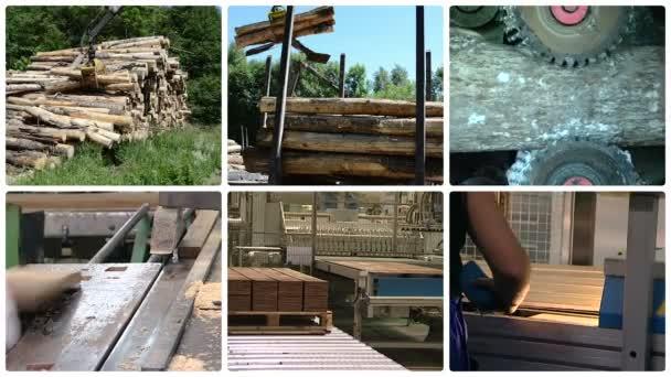 Tree log transportation. Floor parquet wood board production