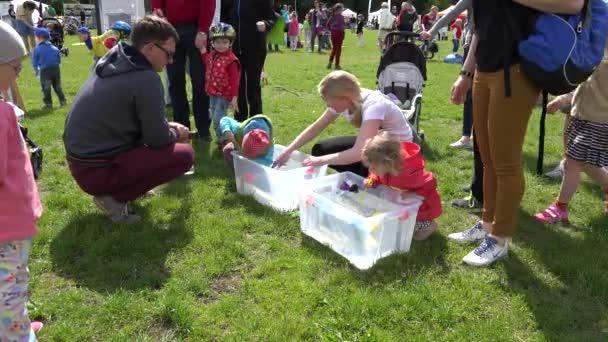 Kinder spielen Entenrennen im kleinen Wasserbecken mit Stroh. 4k