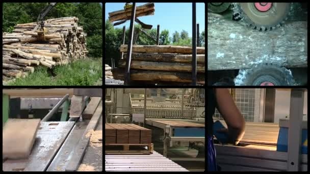 Log transportation. Floor parquet wood board production
