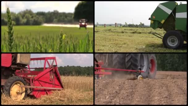 Field spray. Sodder bales. Harvesting. Fertilize. Video collage