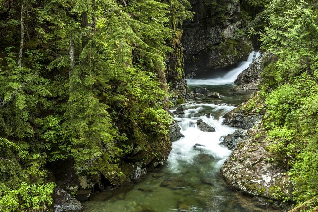 Small falls in Snoqualmie area.