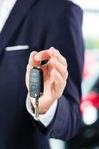 Auto dealer v autodům