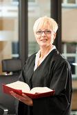 Samice právník s německým občanského zákoníku