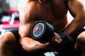 Fotografia Uomo ad addestramento di Dumbbell in ginnastica