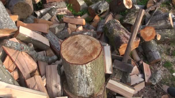 Muž, štípání dřeva