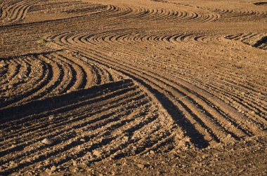 ploughed cultivated farm field soil background