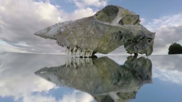 koňské lebky kostní lebka na zrcadlo a mraky pohybu. Timelapse 4k