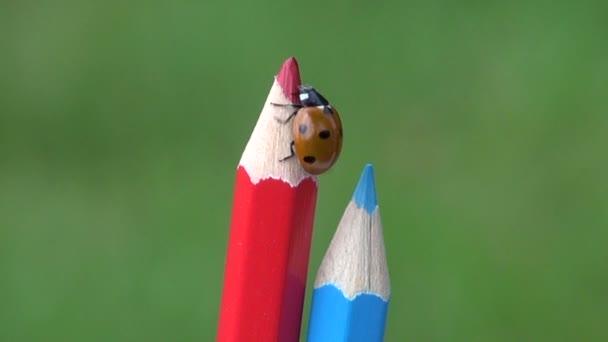 Beruška-štěstěna procházení na tužky