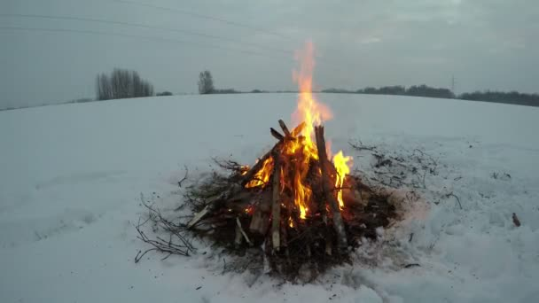 Bonfire burning in the deep snow in overcast evening, time lapse 4K