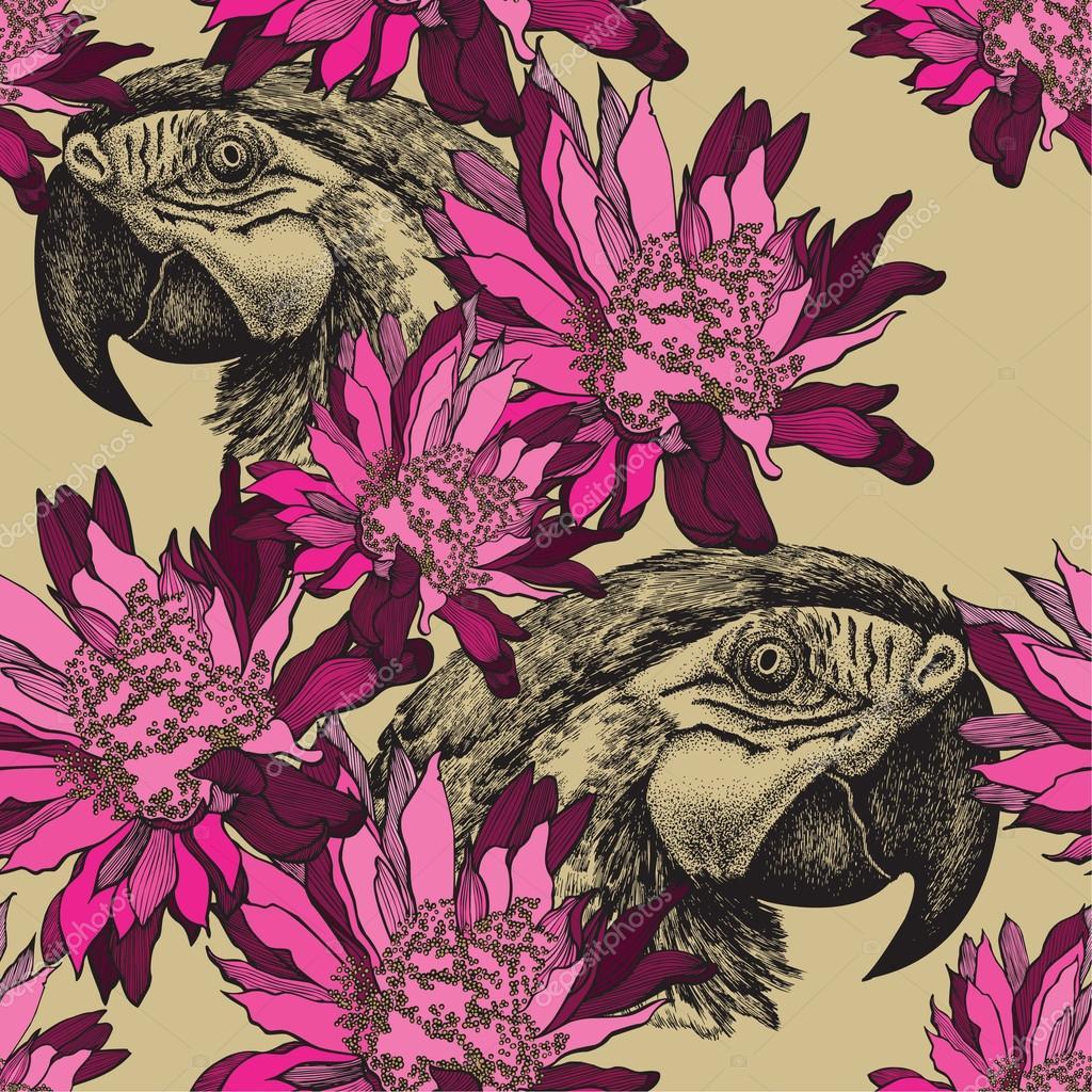 Fond D Ecran Transparent Avec Fleurs Roses Et Perroquet Dessin A