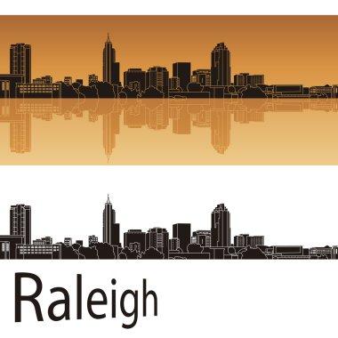 Raleigh skyline in orange background