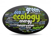 ecology  conservation word cloud