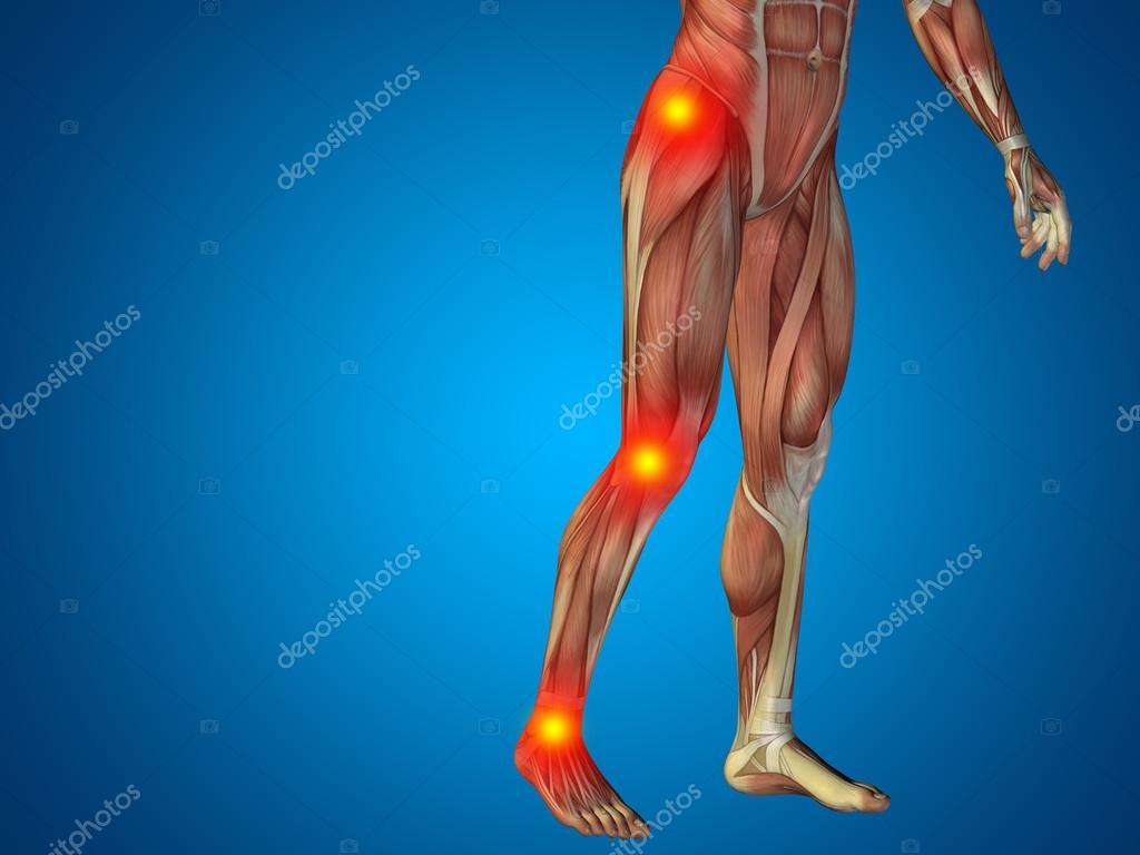 Konzeptionelle 3d mann menschlich Anatomie zu senken, Körper oder ...