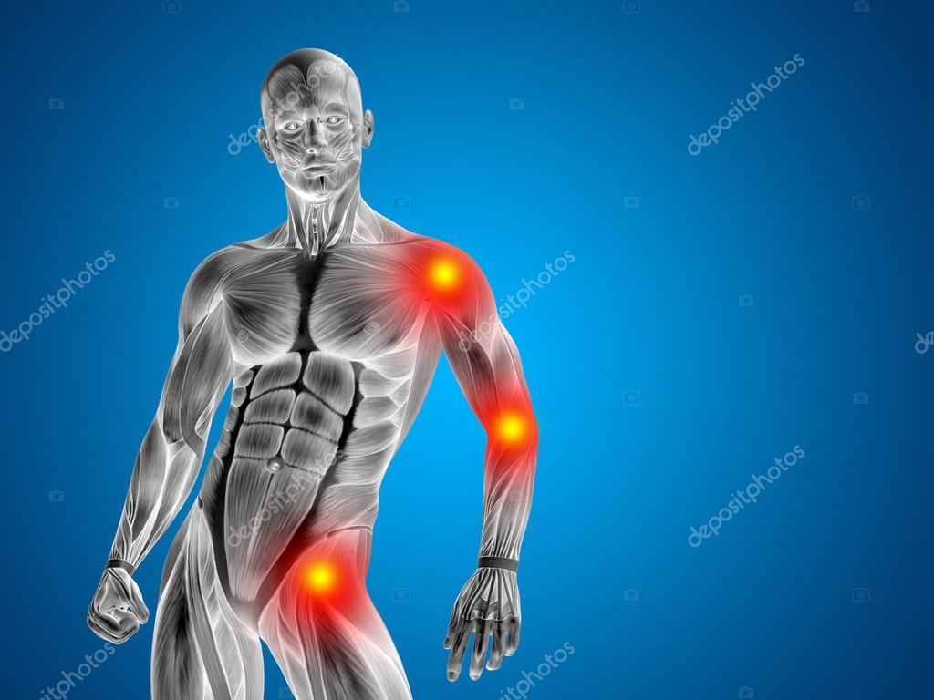 3d hombre humano Anatomía superior cuerpo o salud diseño conceptual ...