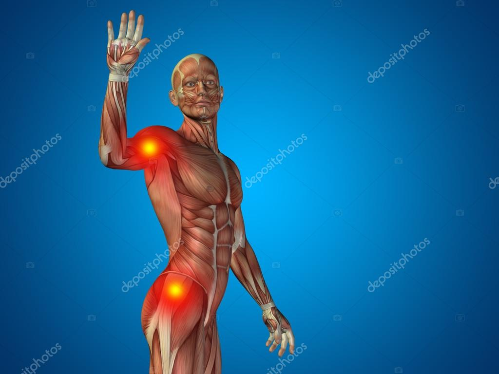 Conceptual 3d Human Man Anatomy Upper Body Or Health Design Joint