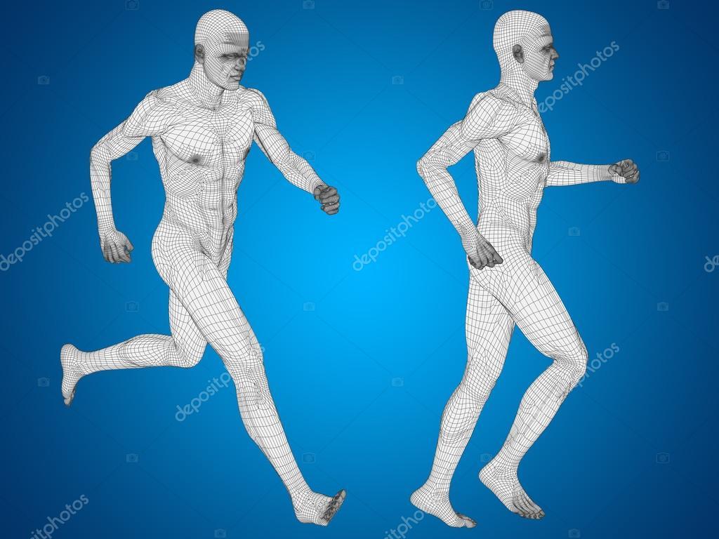 männlichen Anatomie menschlicher Körper — Stockfoto © design36 ...