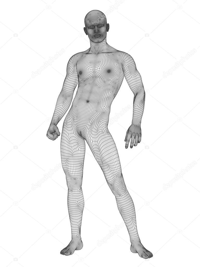 Anatomía humana masculina — Fotos de Stock © design36 #108437744