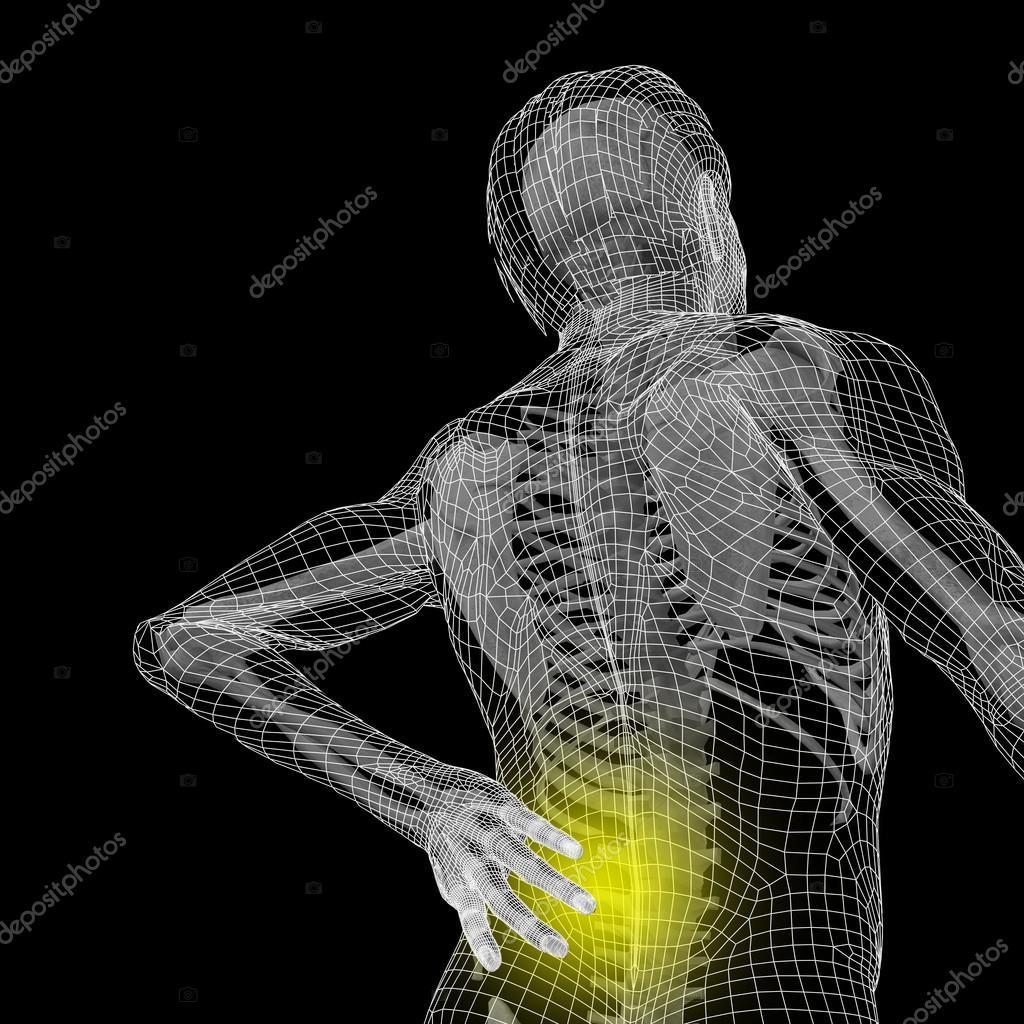 Anatomía hombre con dolor de espalda — Foto de stock © design36 ...