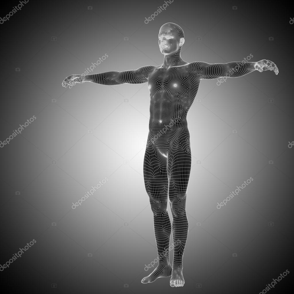 Wireframe male anatomy standing over black — Stock Photo © design36 ...