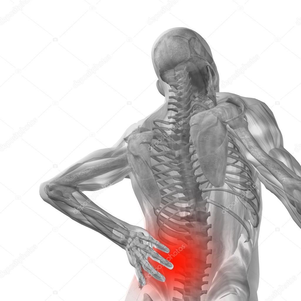 Anatomía con dolor de espalda — Fotos de Stock © design36 #72608281