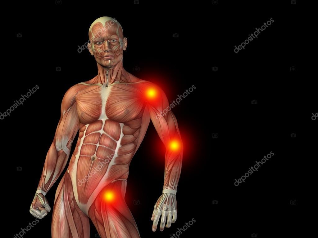 hombre anatomía cuerpo o salud diseño superior — Foto de stock ...