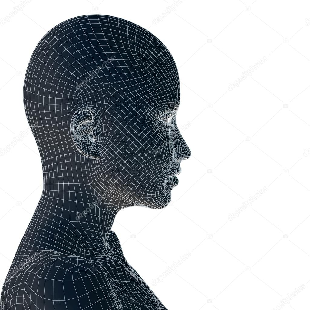 3D wireframe young woman face — Stock Photo © design36 #74382811