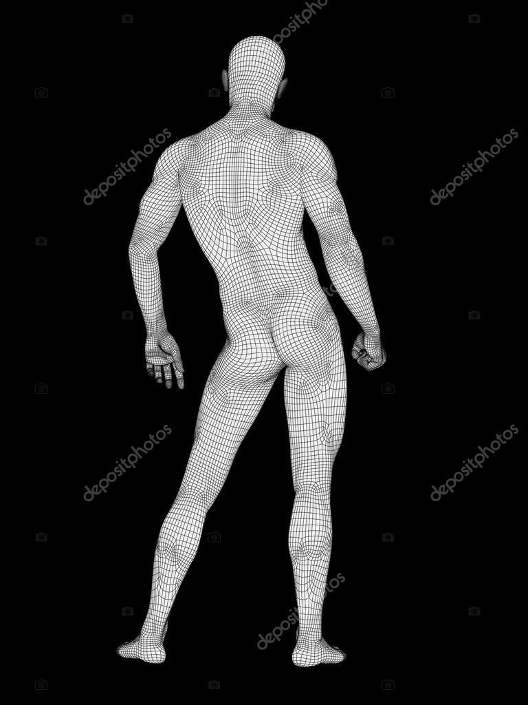 Anatomía humana o macho — Foto de stock © design36 #95385606
