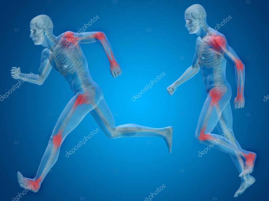 Anatomía del esqueleto masculino — Fotos de Stock © design36 #96290390