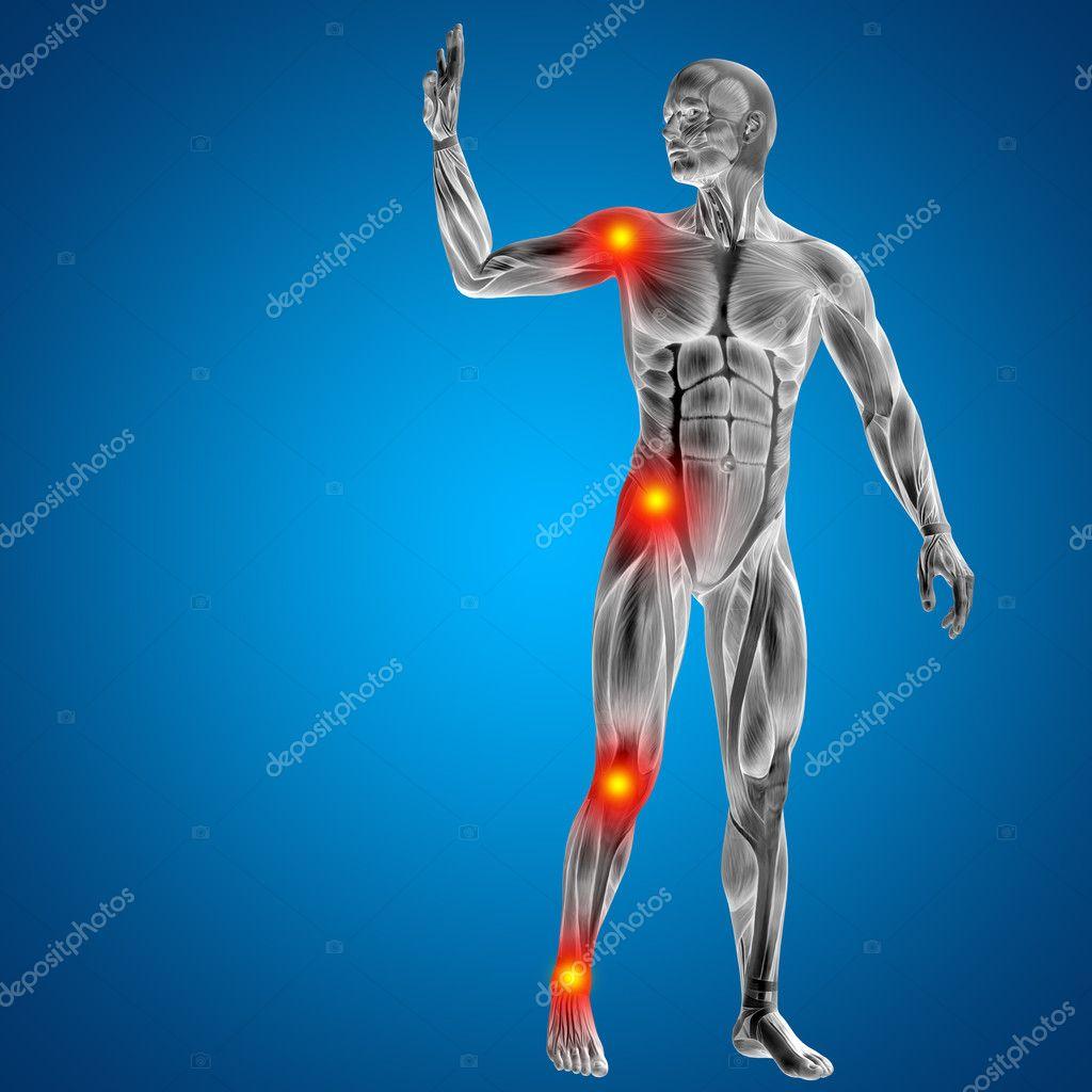 Menschlichen oder Mann mit Muskeln — Stockfoto © design36 #96291570