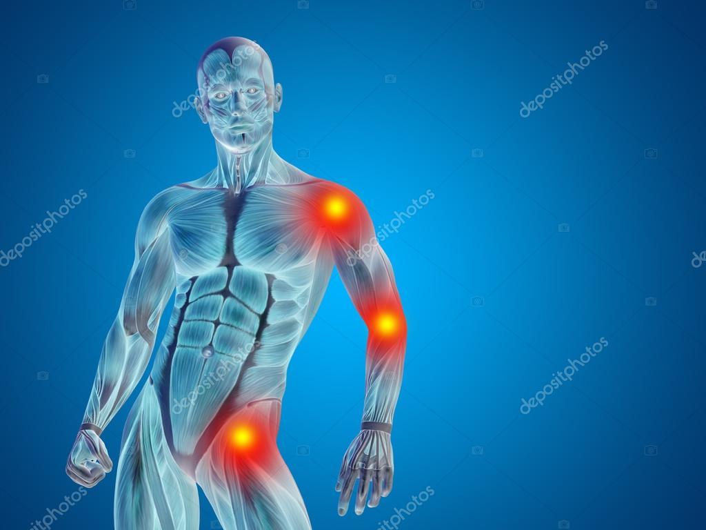 anatomía humana hombre — Foto de stock © design36 #96291760