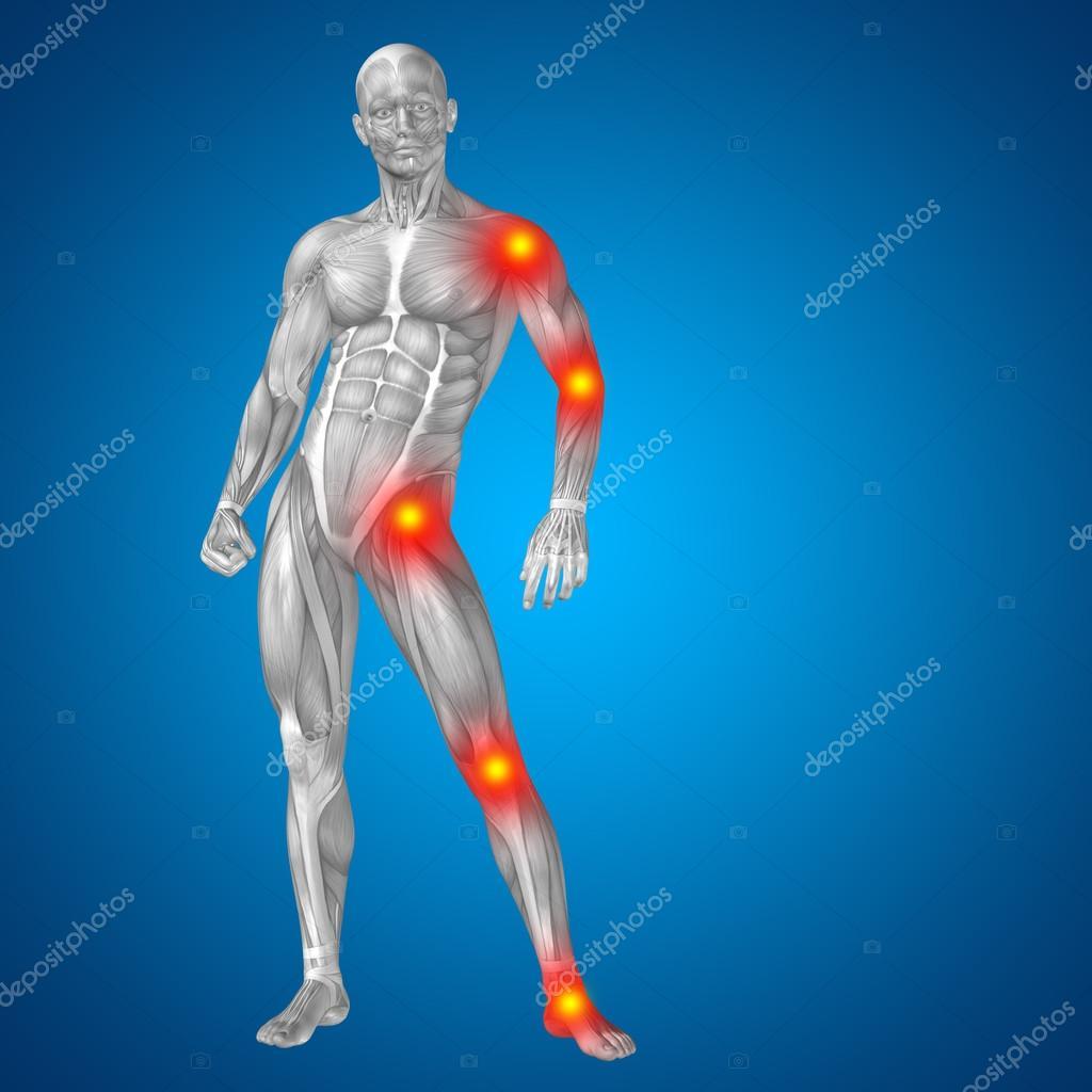 Menschlichen oder Mann mit Muskeln — Stockfoto © design36 #96292876