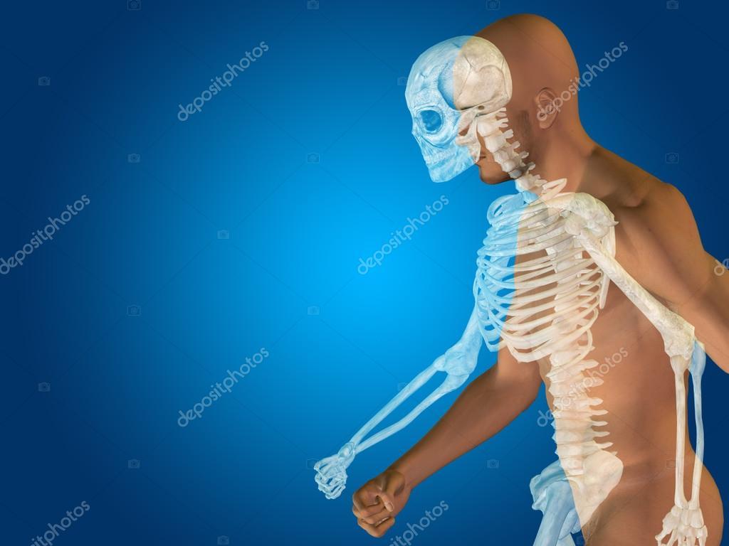 pecho de cuerpo médico o de salud — Foto de stock © design36 #96300380