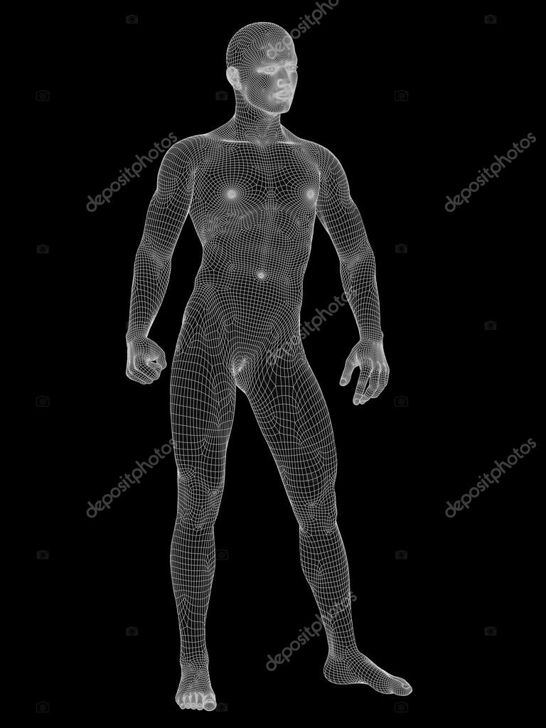 male anatomy made of white — Stock Photo © design36 #98335144