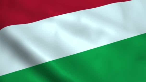 Realistic Hungary flag