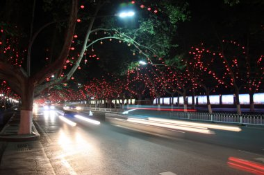 vehicles and light, trees in the modern city, in the night