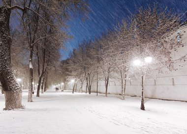 Snowy alley at night